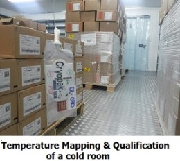 temperature-mapping-and-qualification