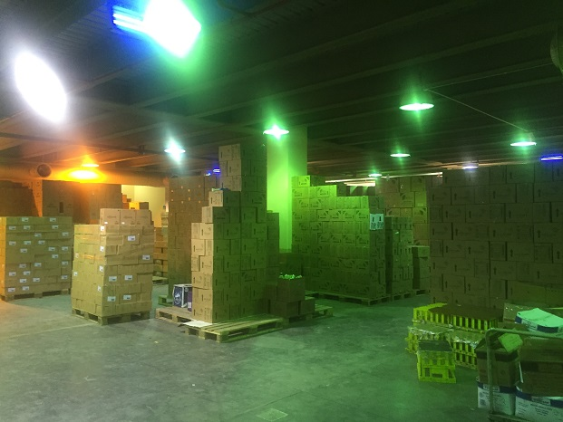 temperature-mapping-of-baby-food-warehouse