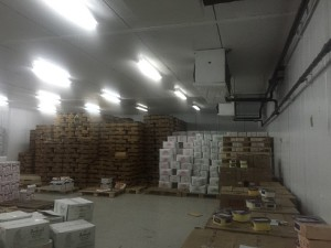temperature-mapping-of-food-storage-freezer